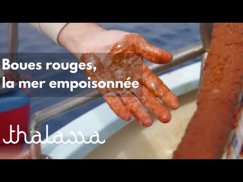 Boues Rouges, la mer empoisonnée (reportage complet)
