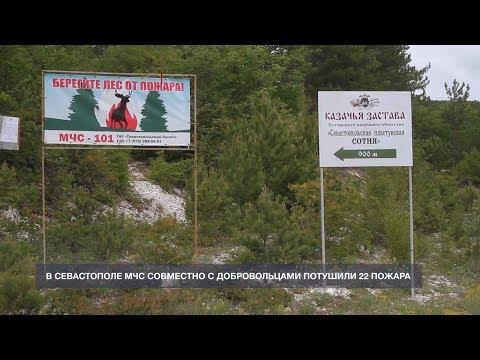 НТС Севастополь: 22 севастопольских пожара МЧС и добровольцы тушили вместе