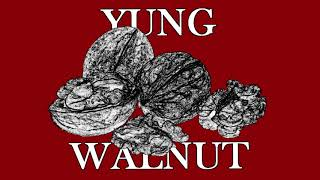 yung walnut - when the pizza rolls are done