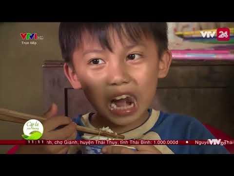 THTT cặp lá yêu thương tại Bà Rịa Vũng Tàu - Tin Tức VTV24