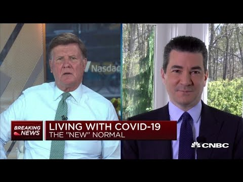 Former FDA chief Dr. Scott Gottlieb on slowing spread, antibody testing and more