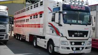 "Transports Bacle (livestock-express.sky"")"