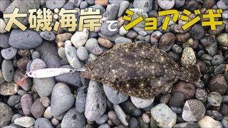 2017年8月神奈川県大磯ロングビーチ(大磯プリンスホテル)下。 釣果はヒ...