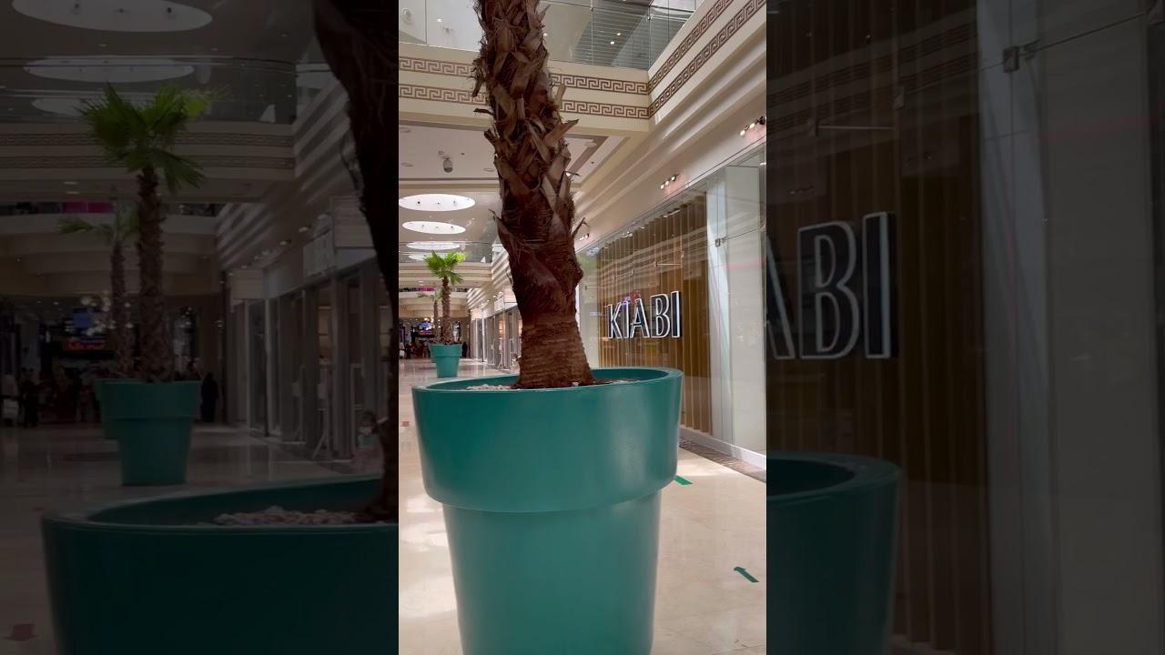 Download زيارة خفيفة ❤️ وهران الباهية 🦋 فندق الموحدين - Hôtel El Mouahidine
