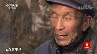 《远方的家》 20200702 行走青山绿水间 黄土地上的绿色梦想| CCTV中文国际