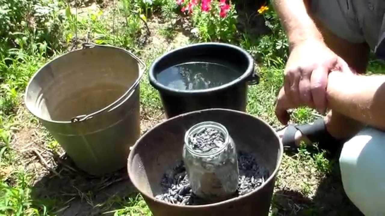 Как клубнику удобрять золой