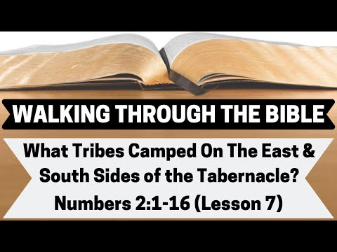 What Tribes Camped On The East \u0026 South Sides Of The Tabernacle? [Numbers 2:1-16][Lesson 7][WTTB]