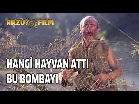 Şaban Oğlu Şaban - Hangi Hayvan Attı Bu Bombayı