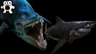 Creatures More Terrifying Than Megalodon Living In the Mariana Trench