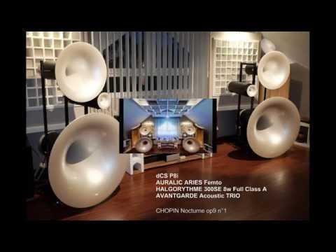 AVANTGARDE Acoustic TRIO, HALGORYTHME 300B, dCS P8i, AURALIC Aries Femto
