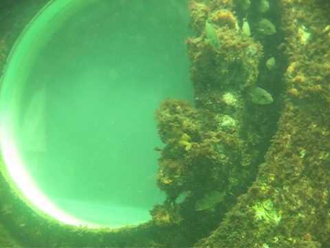 Entering the Jules Undersea Lodge