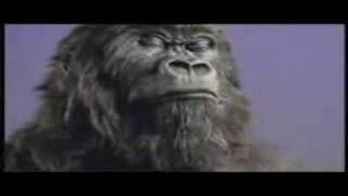 Repeat youtube video Cadbury Gorilla - In The Air Tonight (Extended Mix)