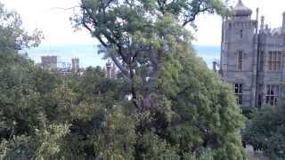 Алупка, Воронцовский дворец, гора Ай-Петри, сентябрь 2013 года.(Видео снято с огромного камня за Воронцовским дворцом, популярного для туристов места для фотографирования., 2013-10-30T07:51:36.000Z)