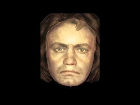 The Mask of Beethoven (Photoshop Reconstruction)