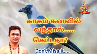 காகம் கனவில் வந்தால் கெட்டதா? crow dream in tamil