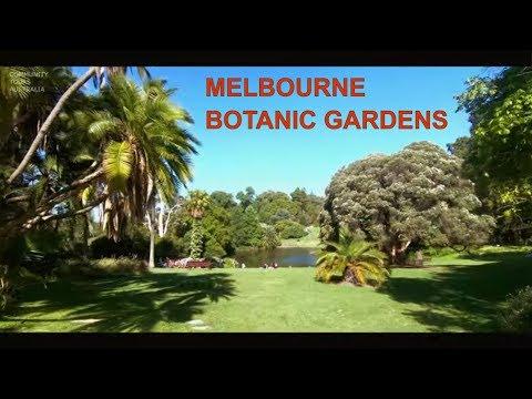 Royal Botanic Gardens Best City Park in Melbourne Australia 2019 - 2.7K