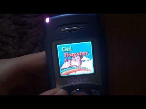 Samsung SGH-C100 Games