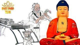 100 Lời Khuyên Quý Báu Để Giữ Gìn Sức Khỏe - Người Trẻ Cũng Phải Nên Gi Nhớ - Lời Phật Dạy