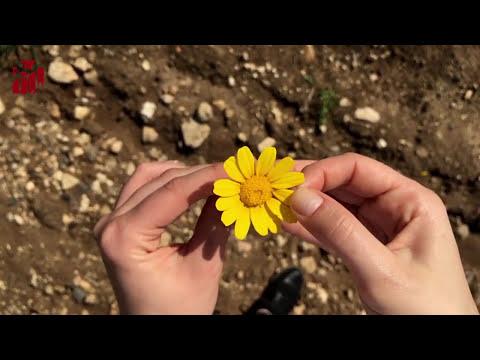 Onu Kendine Nasıl Aşık Edersin? (8 Basit Kural)