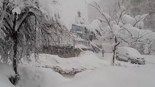Yoğun kar yağışı..trabzon