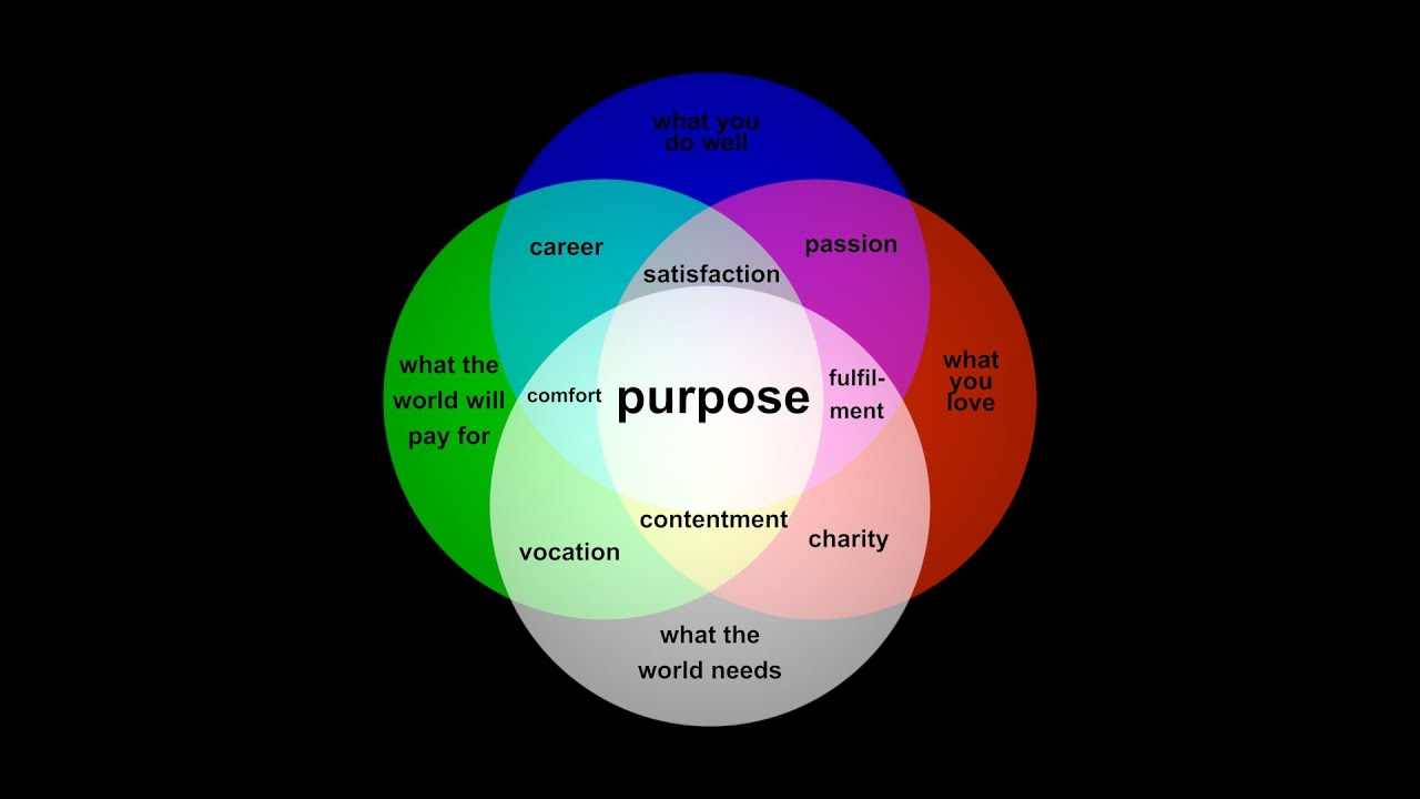 find your purpose with this animated venn diagram