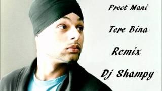 Preet Mani Tere Bina Remix Dj Shampy