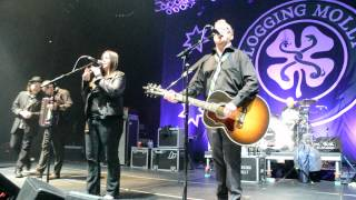 Joe Hurley with Flogging Molly 'The Times They Are A Changing '. Bob Dylan
