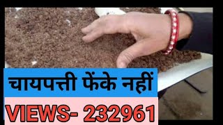 How and why we use, used Tea leaves as organic fertilizer in (Hindi and Urdu)