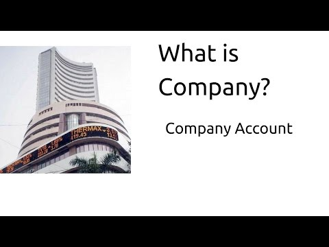 What is Company | Company Account | CA CPT | CS & CMA Foundation | Class12