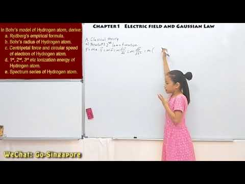 ELECTROMAGNETIC DYNAMICS PRESENTED BY GUO CHENGXI(AGED 8) (01-24)