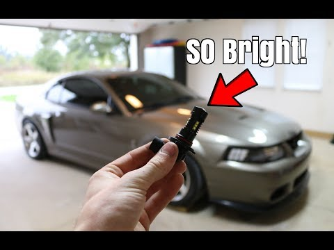 The Terminator Is Staying! Led Fog Light Install!