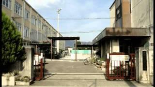 京都市左京区 葵小学校.avi