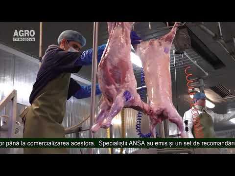 Carnea De Miel – De La Abator Până Pe Masa Consumatorului