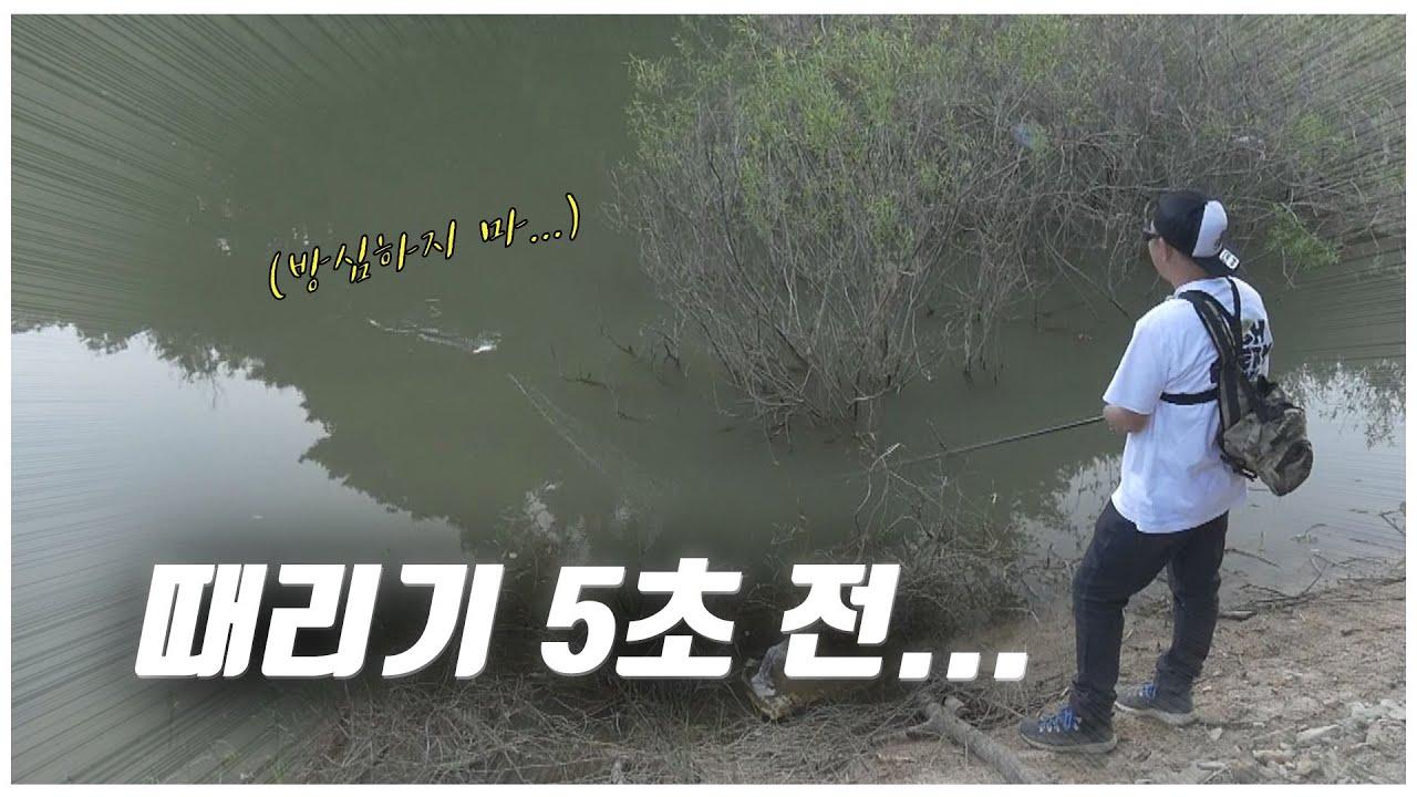 배스의 공격은 언제?? 방심금물!!! [feat.박성완] ep.36_korea bass