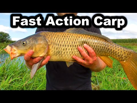 Fast Action Carp Fishing With Homemade Boilies (Bread Corn Pack Bait)