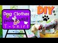 DIY🐶 Dog clothes from a baby T-shirt, Coton de tulear I Lorentix