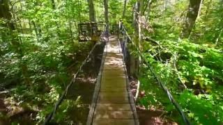 Cornell Farm Reserve (Dartmouth, MA)