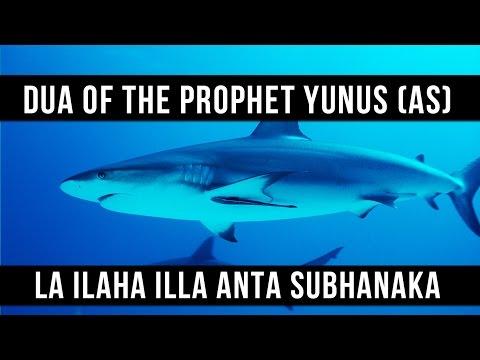 La ilaha illa Anta Subhanaka - Dua Of The Prophet Yunus (AS) - Saad Al Qureshi