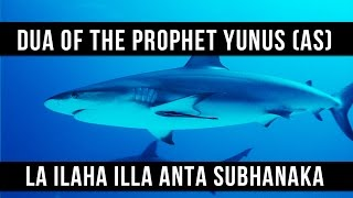 La ilaha illa Anta Subhanaka - Dua Of The Prophet Yunus (AS) - Saad Al Qureshi
