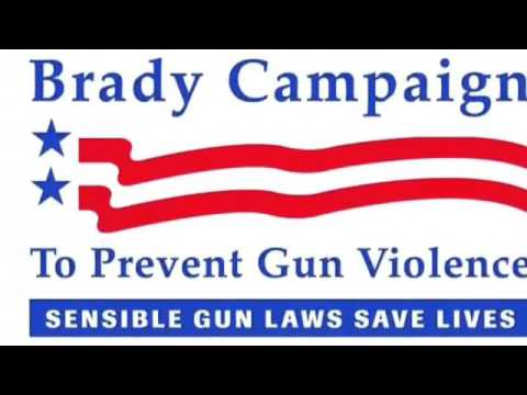 The Brady Bill: Exploring Gun Rights