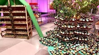 cupcake wars season 5   youtube