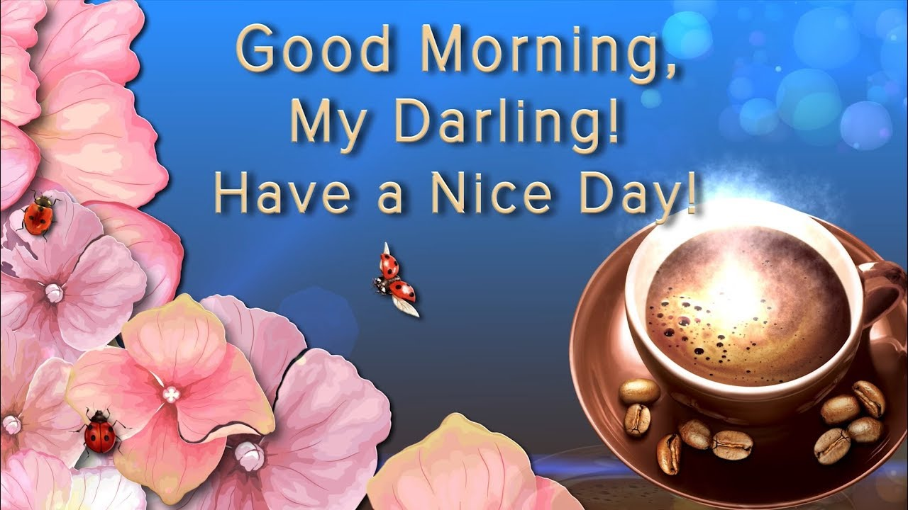 Good Morning My Darling Have A Nice Day 4k Animation Greeting Cards Youtube