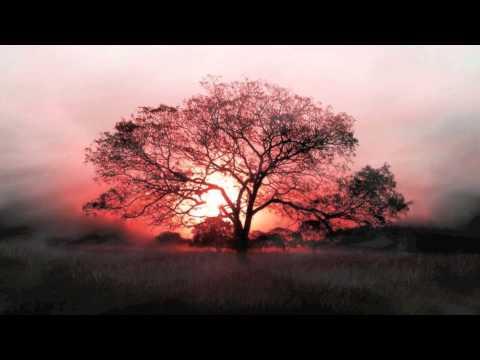 All Tracks - Donovan Woods
