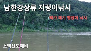 남한강상류 지렁이미끼 낚시~ 빠가사리.메기.뱀장어 낚시