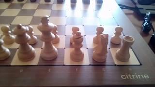Novag citrine online game Acid Ape Chess