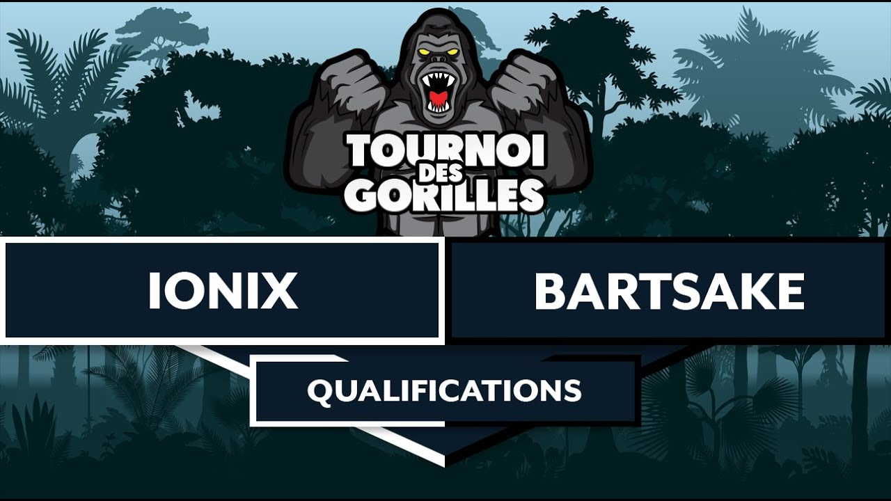 #2 AoE 2 : DE - TOURNOI DES GORILLES - QUALIFICATIONS ! Ionix VS Bartsake