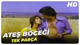 Ateş Böceği - Türk Filmi Tek Parça (HD)