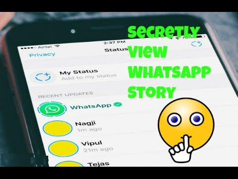 How To See Whatsapp Status Without Knowing Them Secretly View Storystatus Urduhindi