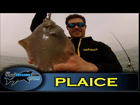 ThreeSixty Sea Angling With Andy Webb episode one part ...