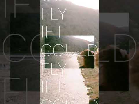 William Aoyama_ If I Could Fly (cover)
